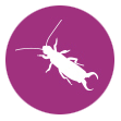 pestcontrollanka
